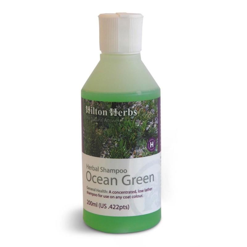 Ocean Green Shampoo