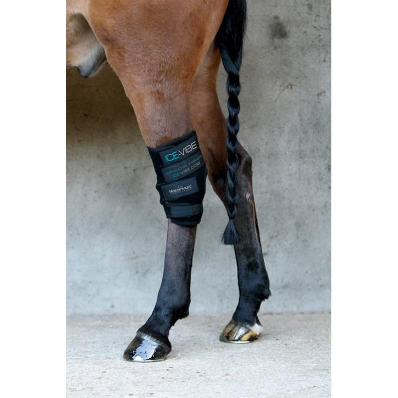 Protector Horseware Ice-Vibe(set completo)Corvejon